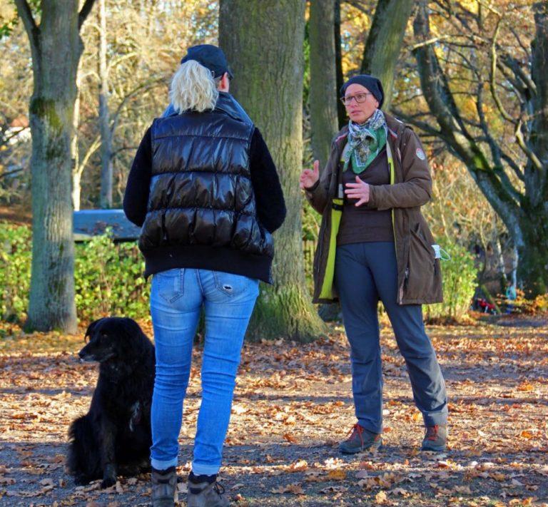 Einzelstunde Harmonic Dogs Bayreuth